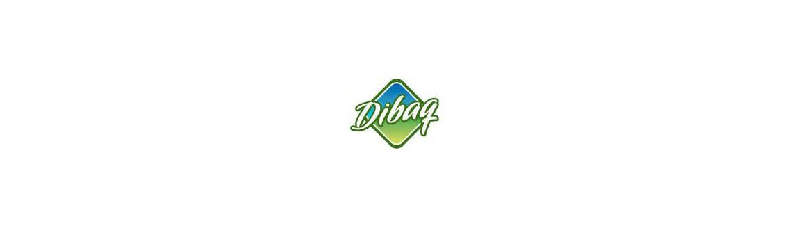 Dibaq economy